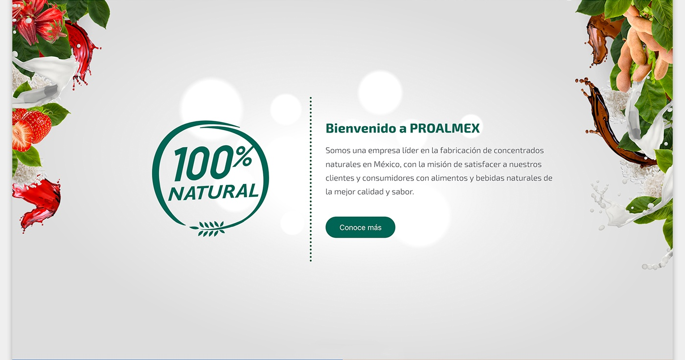 Sitio web PROALMEX index